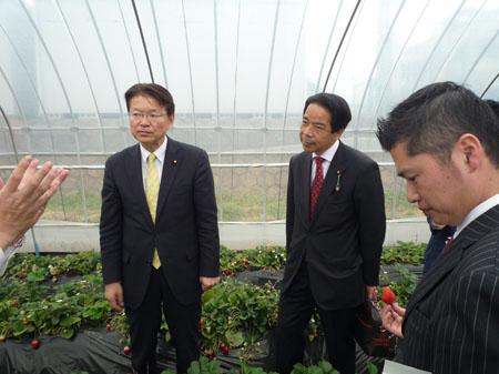 説明を聞く (左から)長妻昭代表代行、高橋昇公認候補予定者、藤岡隆雄総支部長