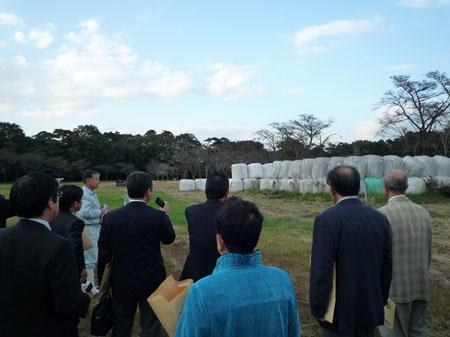 放射性物質に汚染された牧草・堆肥の保管現場